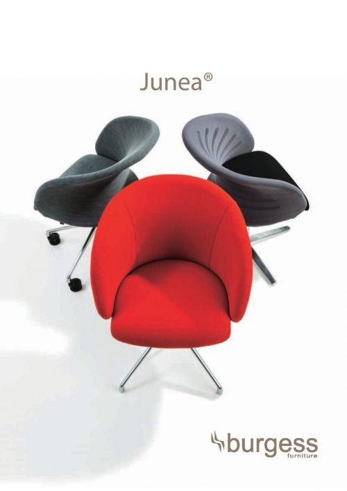 כיסאות מעוצבים דגם JUNEA